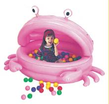 Inflatable Ball Pool